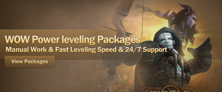 wow power leveling service